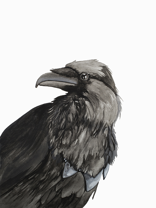 julie viens gouache raven crow bird painting