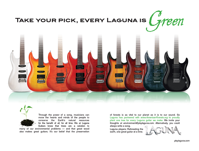 julie viens laguna guitars guitar every green winter showcase booklet